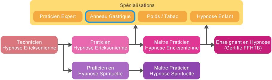 schema_cursus_hypnose_anneau